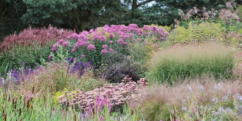 Millennium Garden, Piet Oudolf