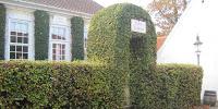 https://www.havefolket.com/2012/10/nyd-efteraret-i-den-gamle-by.html